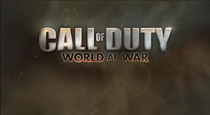 про call of duty 5 world at war